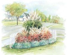Ornamental Grass Garden Plan; This is one of the very low maintenance preplanned perennial gardens with drought tolerant ornamental grasses. It's fits a space about 6 feet wide and 6 feet deep. Plant in very well drained soil, and in full sun. Zones 4-9.