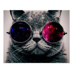 sunglasses cat poster Zazzle_print