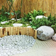 Pergola In Front Yard Pergola With Roof, Pergola Patio, Diy Patio, Pergola Ideas, Thuja, Backyard Creations, Small Yard Landscaping, Japan Garden, Japanese Garden Design
