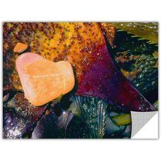 Dean Uhlinger Pebbles On Kelp Removable Wall Art, Size: 14 x 18, Purple