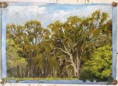 WARM-UP - A quick little plein air sketch looking at the neighbours trees from my outdoor studio in Bridgetown Western Australia. It was 39.5 degrees celcius (103 farnenheit) at my easel yesterday so I stayed inside and was lazy. Still on holidays :) This sketch was from last year.  #painting #oilpainting #landscapepainting #landscape #artist #landscapeart #oiloncanvas #enpleinair #pleinairpainting #pleinair #australianlandscape #australianlandscapepainting #australianlandscapes #australia…