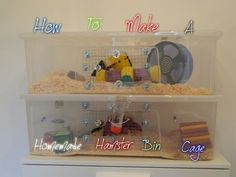 How to make a homemade Hamster Bin cage - YouTube