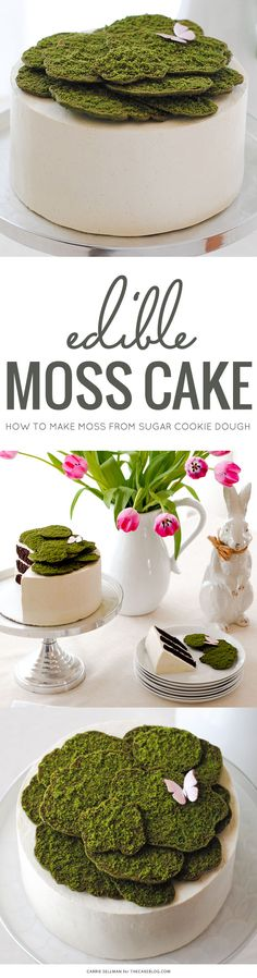 Edible moss, made from sugar cookie dough, creates a lovely topper for this spring cake.  By Carrie Sellman for TheCakeBlog.com.