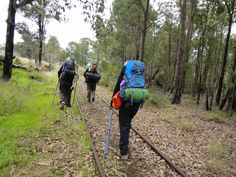 Great to be on the #Bibbulmun #Track again #Women #Walk #WA Travel Alone, Adventure Travel, Track, Tours, Pictures, Women, Photos, Runway, Women's