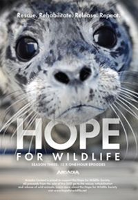 We are proud supporters of Hope For Wildlife and if you love animals like we do, then you need to learn more about the incredible work they do for our native wildlife! Find out more at. Canadian Wildlife, Charity, Creatures, Canada, The Incredibles, Learning, Happy, Nature, Animals