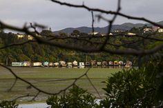 Paremata overlooking boat sheds | © Elyse Childs Photography