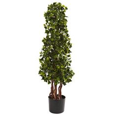 nearly natural 3 Potted English Ivy Spiral Tree - Indoor & Outdoor English Ivy Indoor, English Ivy Plant, Topiary Trees, Potted Trees, Topiaries, Potted Plants, Ivy Plants, Fake Plants, Plants Indoor
