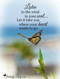 Listen to the wind in your soul...