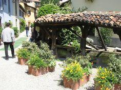 Vicolo dei Lavandai - Zaułek Praczy Pergola, Outdoor Structures, Lavender, Outdoor Pergola
