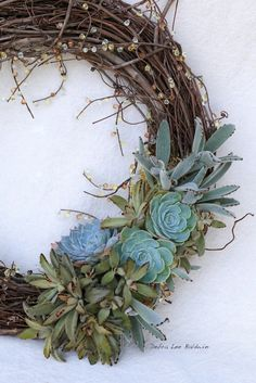 Do you like the succulent wreath that my friend Denise made during a wreath party at my home? To create a similar one, you'll need about 100 cuttings, a wire wreath form, florist's …NOTE Use artific. or preserved plants Diy Wreath, Door Wreaths, Grapevine Wreath, Wreath Ideas, Suculentas Diy, Cactus Y Suculentas, Succulent Gardening, Planting Succulents, Succulent Planters
