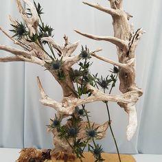 More #suffolkshow #instapics #driftwood #sculpture