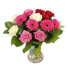 nice Luxury, Calgary Flowers - New Bouquet Luxury by Calgary Flowers this divine bouquet of luxury red Roses, white Roses, pink Roses and hot pink Germini will be a good start in the right direction.  ,  http://sendflowerstocalgary.com/product/luxury/, 79.95