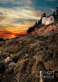 Karen Jorstad - Bass Harbor Lighthouse Warm Sunset