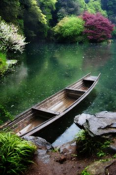 What every garden needs. (;