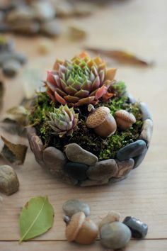 how to make a polymer clay rock planter. Excellent tutorial for faux stones.