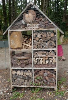 Ruscombe Green: Make an Insect House like the chicken wire across the front to keep everything in the house