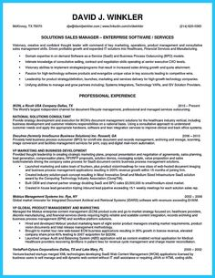 Examples Professional Resumes Resume Doc Samples Example Home