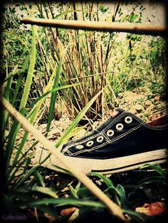Shoe lying around