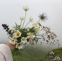 "1,496 Likes, 8 Comments - Alicia Rico + Adam Rico (@bowsandarrowsflowers) on Instagram: ""Flower Hike. #bowsandarrowseurope"""