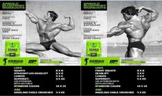 Arnold blueprint phase 2 workout pinterest workout and gym arnold blueprint legs lower back abs malvernweather Gallery