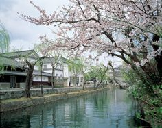 If you've ever longed to go back to an old Japan, where samurai stayed at old ramshackle inns and merchants filled the air with the scent of food, then some of these traditional streets will be right up your alley. We take you to five of Japan's most-loved streets, from well-worn paths in secluded valleys to bustli ...