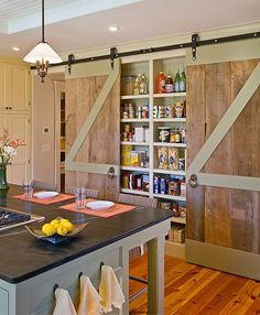 Organized kitchen pantry ideas shallow pantry w/ sliding doors - Experience Of Pantrys