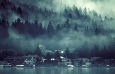 Fog, Lake Sammamish, Washington  photo via mortal