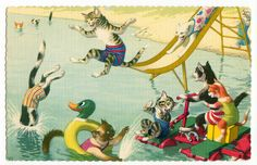 Alfred Mainzer cats postcard