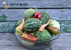 Pepeni murati in saramura, reteta traditionala moldoveneasca Carne, Acai Bowl, Watermelon, Breakfast, Pantry, Youtube, Canning, Kitchens, Drinks
