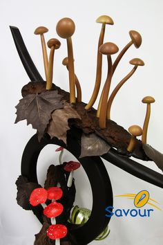 A chocolate showpiece coming from the deepest depths of the woods #showpieces