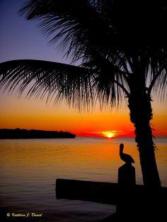 The Florida Keys & Key West - Photo Adventure