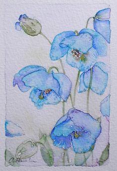 PAVOT de l'Himalaya petite aquarelle originale de l'artiste Amanda Hawkins 9 x 14 cm art décoratif floral oeuvre chalet fleurs