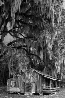 Florida Native Photography - Cracker House and Spanish Moss