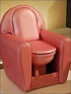 Bring the throne to the living room......I'll pass.