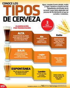 Wine Drinks, Cocktail Drinks, Alcoholic Drinks, Vodka, Tequila, White Russian, Irish Cream, Beer Infographic, Beer Burger
