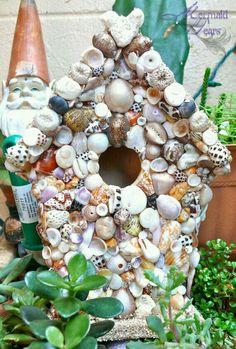 Jah birdhouse shells