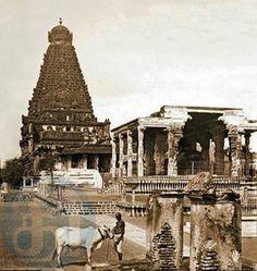 a rare foto of Tanjore Big Temple Ramanathaswamy Temple, Indian Temple, Hindu Temple, Rare Pictures, Rare Photos, Kanyakumari, Temple Architecture, Temple Design, Vintage India