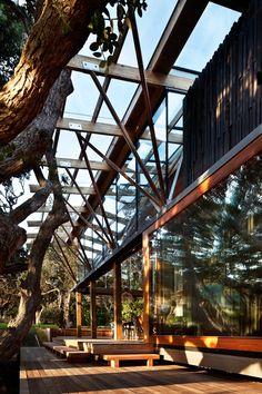 Under Pohutukawa by Herbst Architects. Photo Patrick Reynolds.