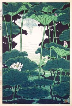 In the Shade of the Lotus, Shinobazu Pond by Shiro Kasamatsu.- In the Shade of the Lotus, Shinobazu Pond by Shiro Kasamatsu, 1959 Source by elli_b - Botanical Illustration, Illustration Art, Illustrations, Art Occidental, Art Asiatique, Art Japonais, Guache, Japanese Painting, Chinese Painting