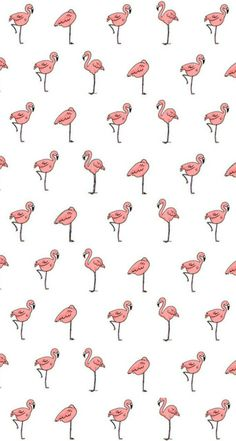 carterie, pergamano et tableaux - Page 3 Free Pink Flamingo Computer Wallpaper Iphone Background Wallpaper, Computer Wallpaper, Aesthetic Iphone Wallpaper, Screen Wallpaper, Wallpaper S, Pattern Wallpaper, Aesthetic Wallpapers, Computer Tapet, Technology Wallpaper