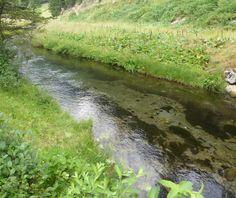 Impressionen Ultental Kurzbeschreibung Wanderung im Ultental im urigen St. Gertraud am Talschluss des Ultentals wo sich Fuchs und Igel guten Tag sagen