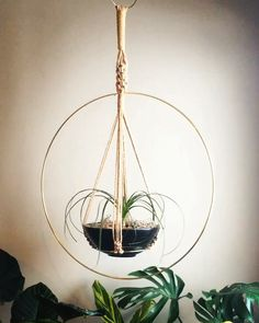 Most up-to-date Free of Charge Macrame Plant Hanger outdoor Tips ATEN Macramé Plant Hanger – Macrame Plant Hanger Patterns, Macrame Plant Holder, Macrame Patterns, Hanging Air Plants, Hanging Planters, Plants Indoor, Macrame Hanging Planter, Hanging Terrarium, Hanging Baskets