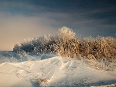Frost & Snow by Silos & Smokestacks National Heritage Area, via Flickr