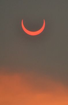 Beautiful Nature — furples: (by lissagwen) Annular eclipse seen.