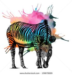 Watercolor rainbow zebra. Raster illustration. by moopsi, via ShutterStock