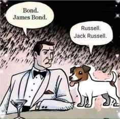 The always dapper James Bond with the equally dapper Jack Russell! Jack Russell Terriers, Jack Russell Funny, Jack Russell Puppies, Animals And Pets, Funny Animals, Cute Animals, Golden Retrievers, I Love Dogs, Puppy Love