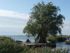 Blick über das Achterwasser: Paar am Hafen des Seebades Zempin auf der Insel Usedom.