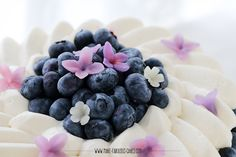 blueberries and bean paste lilacs and blossoms Blueberry Cream Cake Recipe, Blueberry Cake, Best Linzer Cookie Recipe, Cake Filling Recipes, My Birthday Cake, Cake Fillings, Bean Paste, Oreo Cheesecake, Christmas Cooking