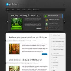Polished WordPress Theme By Elegant Themes | Best WordPress Themes 2014