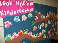 Owl Bulletin Board Ideas 3